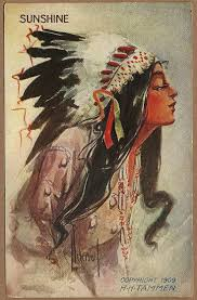 133 best native american indian maiden images on pinterest
