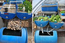 12 diy aquaponics system for indoor and backyard the self
