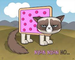 19 Awesome Grumpy Cat Christmas - grumpy cat valentines day gif your meme source