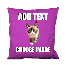 Create A Grumpy Cat Meme - your own grumpy cat meme