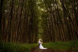 hawaii photographers kauai hawaii wedding