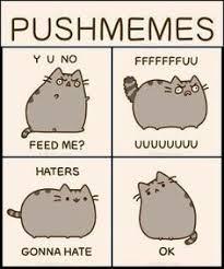 Pusheen Cat Meme - pusheen puppies kitties and creatures oh my pinterest