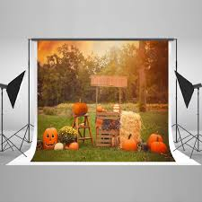 online buy wholesale backdrops photography 7x5 from china