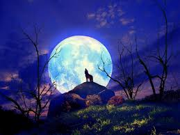 full moon wolf howling wallpaper pagan stuff pinterest moon