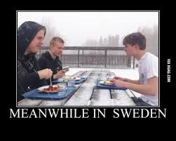 Swedish Meme - 16 best heritage images on pinterest funny photos ha ha and funny
