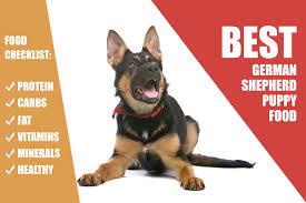 food diet for german shepherd puppy 28 images rawfood diet for