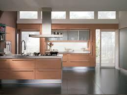kitchen cabinet modern concept with custom door kitchen