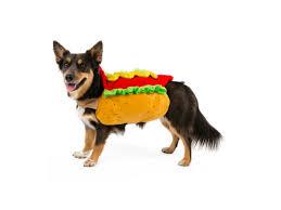 Hotdog Halloween Costume Halloween Pet Costumes Shopathome