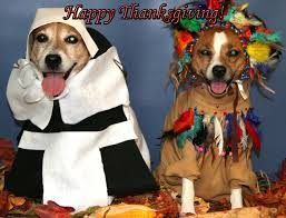 happy thanksgiving 2013 destiny for dogs not for profit 501 c 3