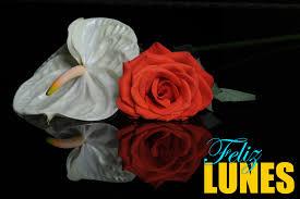 imagenes de feliz inicio de semana con rosas lunes en rosa buscar con google lunes pinterest
