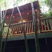 Vacation Homes In Atlanta Georgia - alpaca treehouse in the bamboo forest 21 photos vacation