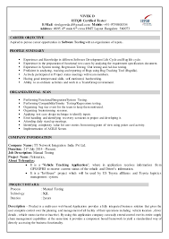 Objective For Software Testing Resume Useful Phrases French Essay Esl Analysis Essay Writer Sites Tenshi