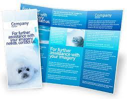 brochure template free free microsoft word brochure templates