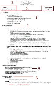 Extra Curricular Activities In Resume Sample by Example Of How To Write A Resume