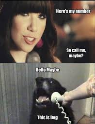 Maybe Meme - funny call me maybe hello dog by mayaustin1995 on deviantart