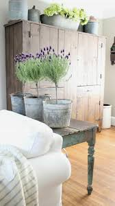 shabby chic living room with lavender indoor plants relaxing