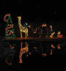 zoo lights at hogle zoo some sort of christmas lighting after thanksgiving how have i not