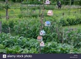 Hanging Vegetable Gardens by Garden Decorations Hanging From A Pole In A Rustic Vegetable Plot