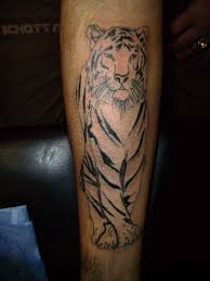 bengal tiger stencils meaning design idea for and
