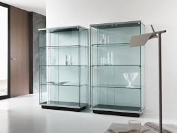 Glass Curio Cabinet With Lights Furniture Ikea Curio Cabinet Curio Ikea Detolf Glass Cabinet