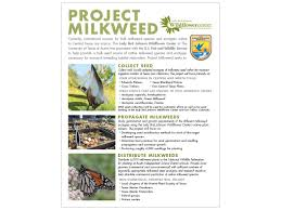 Project Milkweed Lady Bird Johnson Wildflower Center