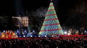 national tree lighting ceremony nctrr2014tree jpg
