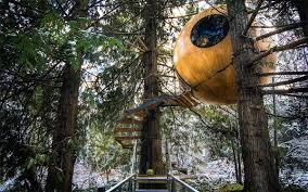 vancouver treehouse hotel lets you sleep in a bauble