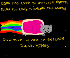 Nyan Cat Meme - flying hippo drops a bomb