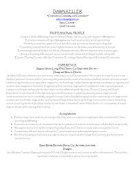 Sample Executive Director Resume Resume Format For Nursing Assistant