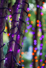 halloween purple led string lights halloween lights and decorations reimagined from christmas