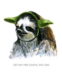 Sloth Fitness Meme - sloth meme do you like fitness