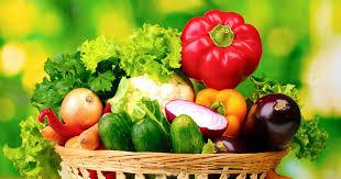 discount specialty garden seeds and gardening supplies