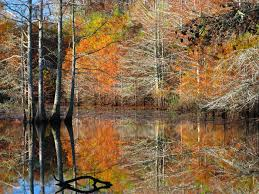 Mississippi scenery images 10 places in mississippi that are a photo taking paradise jpg