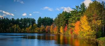 maryland foliage map 2015 best places to see fall foliage in greater washington mcenearney