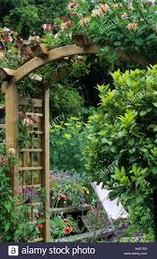 Trellis Arches Garden Trellis Arch Wooden Honeysuckle Bay Tree Lonicera Garden