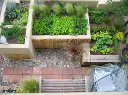 Permaculture Vegetable Garden Layout by Designing An Urban Vegetable Garden Video And Photos