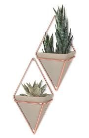 Home Plant Decor by Umbra U0027trigg Small U0027 Wall Vessel Set Of 2 No Hardware Plants