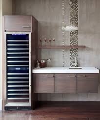 modern dry kitchen dry bar wine cooler home bar contemporary with wood panel modern