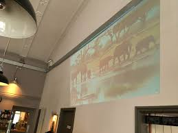 ideas for natural african safari theme party the impala projector safari party wall