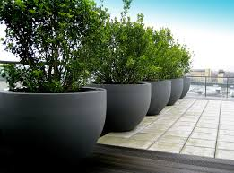 urbis globe planters on roof terrace pinned to garden design