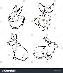 rabbit vector cute hare rabbit sketch stock vector 320304095