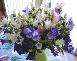 Best Online Flowers Best Online Flower Delivery Websites For Sending Floral Bouquets