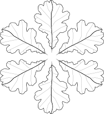 clipart fall leaves coloring page