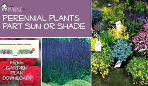 Planning A Garden Layout Free Perennial Garden Plans For Partial Sun Or Shade Pretty Purple Door