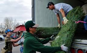 loveland boy scouts needed trees to sell so business