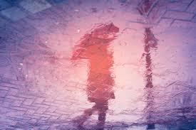 free images street photography texture rain purple