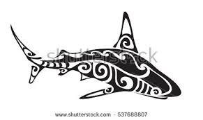 tribal shark stock images royalty free images u0026 vectors