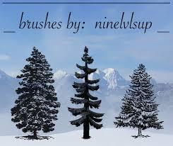 Free Photoshop Pine Trees