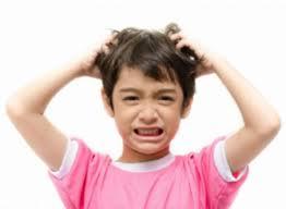 prurito testa e corpo pediculosi pidocchi in testa cause sintomi cure e rimedi