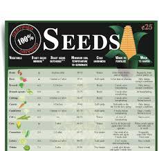 Vegetable Garden Planting Calendar by Veggie Gardening 101 Tips For A Successful Summer Garden Times
